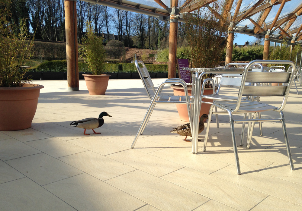 The Alnwick Garden outdoor seating area