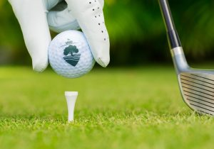 The Nottinghamshire Golf & Country Club branding